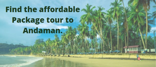 Package Tour to Andaman